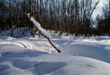 Искрящийся снег на солнце