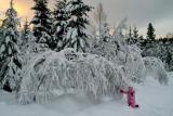 Москву засыпало снегом