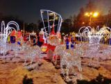 Новогодняя сказка в Сокольниках