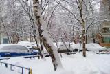 Наконец-то снег!