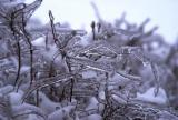 Зимнее стекло
