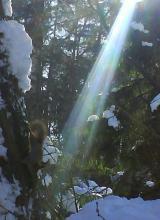 Луч солнца золотой