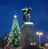 Повелеваю-Новогодней ёлке быть!.jpg